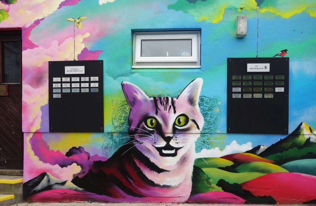 Mural_RSPCA_Cat