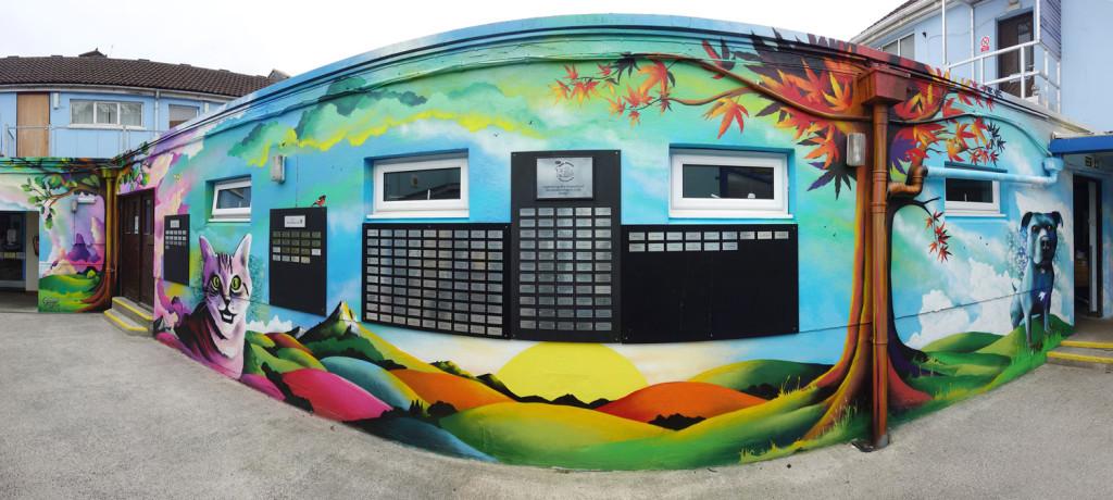 Mural_RSPCA_Cat_Panorama