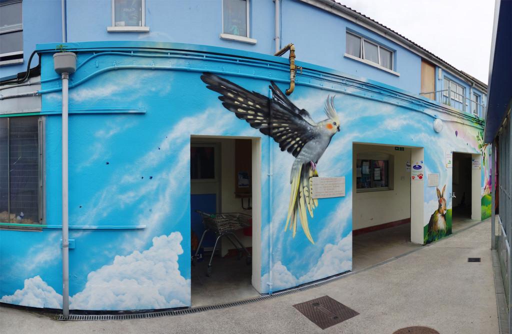 Mural_RSPCA_Cockatiel