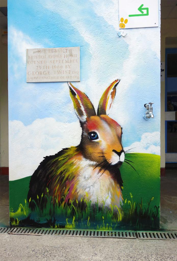 Mural_RSPCA_Rabbit